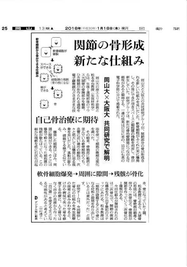 朝日新聞20180118.jpg