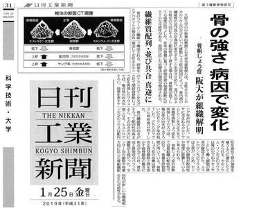20190125 日刊工業新聞-骨粗鬆症_01.jpg